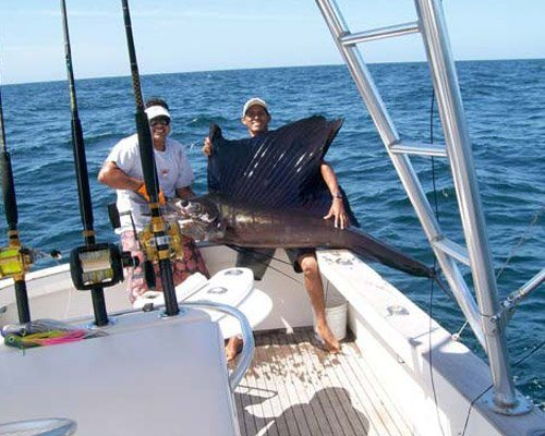 Sport Fishing Charters