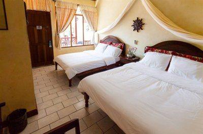 Accommodation & Rentals